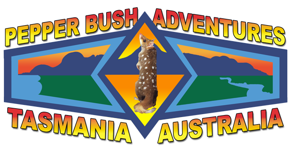 Tasmanian Tours · Pepper Bush Adventures · Wildlife Tours · Wilderness Tours · Nature Tours · Wine Tours Tasmania