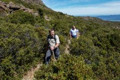 tasmania adventure tours
