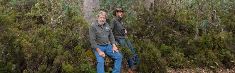 birding tours tasmania